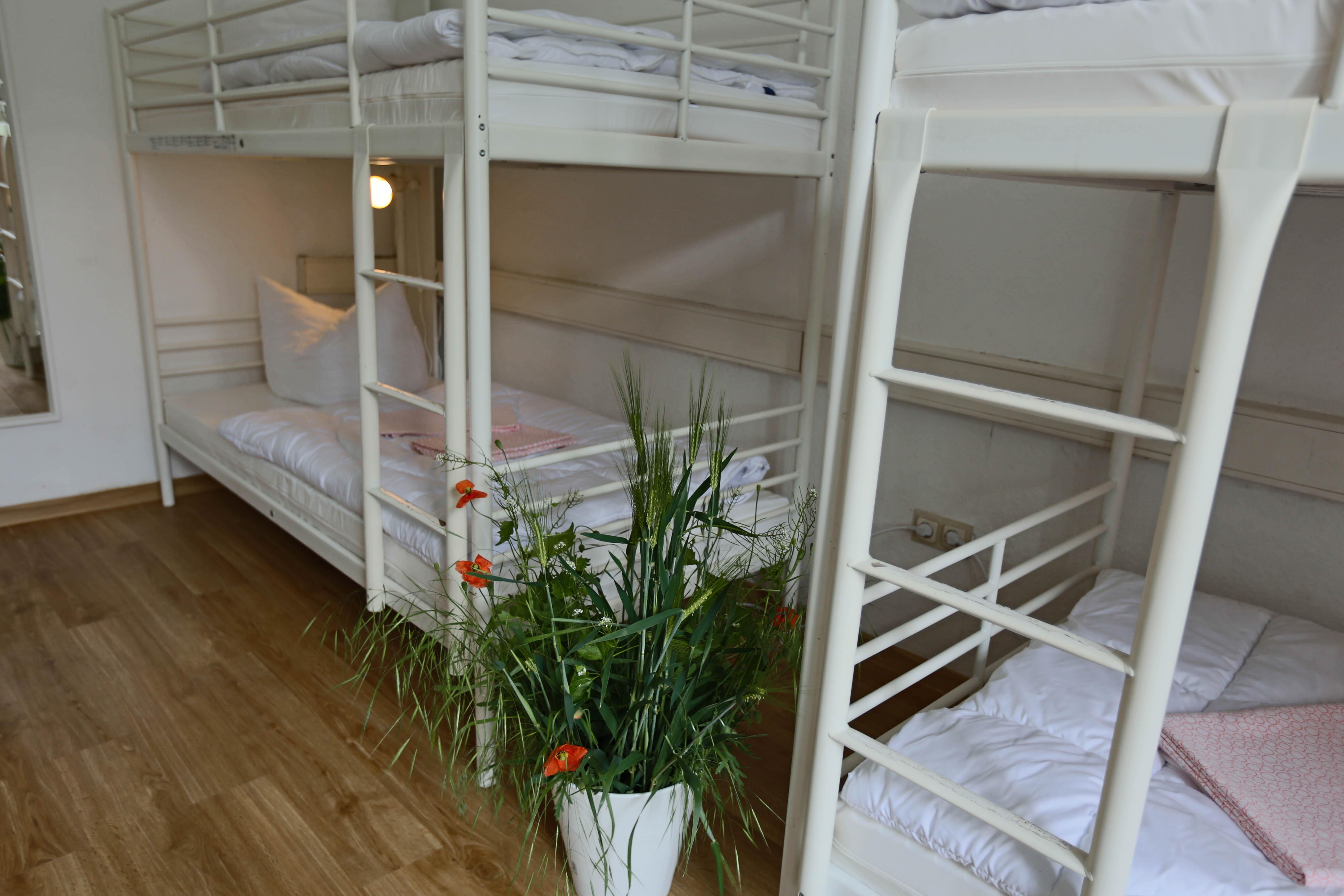 Home Familyinn Gunstiges Gruppen Und Familienhotel In Hildesheim